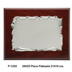placa 29x23 chapa plateada 20x15
